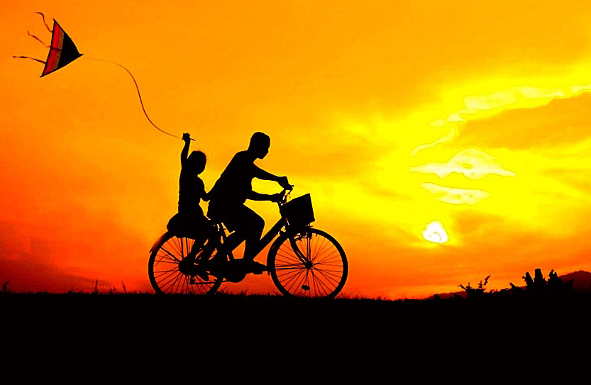 bici fase 2