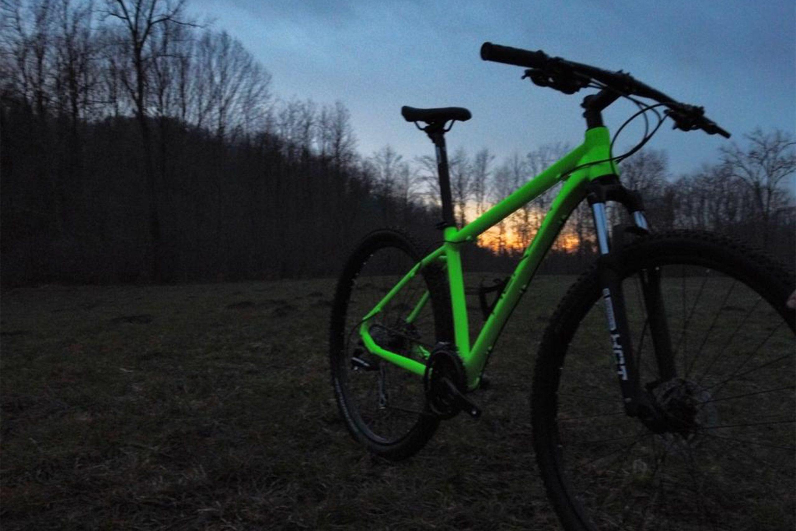 "29"" MTB Alu neon green front"